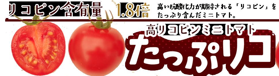 高リコピンミニトマト「たっぷリコ」